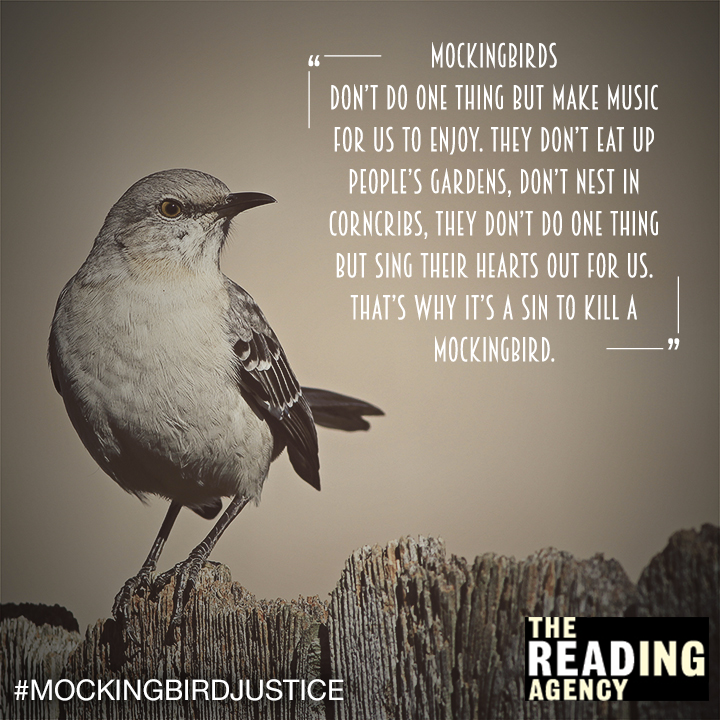 to kill a mockingbird justice Addressing issues of social justice, political justice, moral character, and coming of age in to kill a mockingbird.